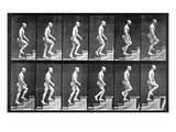 Man Ascending Stairs, from 'Animal Locomotion', 1887 (B/W Photo) Giclee Print by Eadweard Muybridge