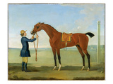 The Duke of Devonshire's Flying Childers, 1742 Giclee Print by James Seymour