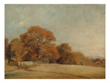 An Autumnal Landscape at East Bergholt, c.1805-08 Giclee Print by John Constable