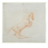 A Prancing Horse, Facing Right, 1790 (Red Chalk on Paper) Giclée-tryk af George Stubbs