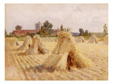 Corn Stooks by Bray Church, 1872 (Oil on Paper Laid on Board) Giclee Print by Heywood Hardy