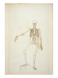Study of the Human Figure, Anterior View Giclee Print by George Stubbs