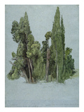 The Cypresses at the Villa D'Este, Tivoli (W/C and Gouache with Graphite on Paper) Giclee Print by Samuel Palmer