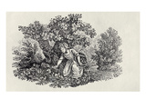 A Girl Gathering Flowers from 'History of British Birds and Quadrupeds' (Engraving) Giclee Print by Thomas Bewick