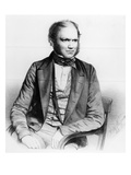 Charles Darwin, 1849 (Litho) Giclee Print by Thomas Herbert Maguire