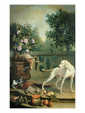 Animals, Flowers and Fruits (Oil on Canvas) Lmina gicle por Alexandre-Francois Desportes