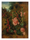 Study of Hollyhocks, C.1826 (Oil on Board) Giclee Print by John Constable