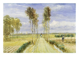 The Poplar Avenue (W/C over Pencil and Black Chalk on Paper) Giclee Print by David Cox
