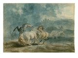 Horses Fighting (W/C over Graphite on Heavy Texture Laid Paper) Giclee Print by Sawrey Gilpin