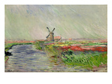 Tulip Field in Holland Giclee Print by Claude Monet