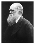 Charles Darwin, C.1870 (B/W Photo) Giclee Print by Julia Margaret Cameron