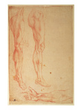 Studies of Legs and Arms (Red Chalk on Paper) Premium Giclee Print by  Michelangelo Buonarroti