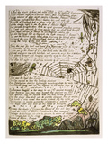 And the Clouds and Fires...', Plate 14 from 'Europe. a Prophecy', 1794 Giclee Print by William Blake