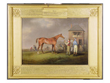Portrait of &#39;Quiz&#39;, the Property of Lord Rous, after His Last Race at Newmarket (Oil on Canvas) Giclee Print by Henry Bernard Chalon