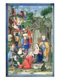The Adoration of the Magi (Vellum) Giclee Print by  Gerolamo dai Libri