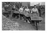 Women Barrowing Coke at a Gas Works, War Office Photographs, 1916 (B/W Photo) Giclee Print by  English Photographer