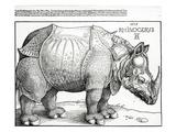 The Rhinoceros, 1515 (Woodcut) Giclée-tryk af Albrecht Dürer