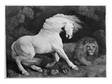 A Horse Affrighted by a Lion, Engraved by the Artist, 1788 (Etching) Giclée-Druck von George Stubbs
