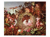 Fairies in a Bird's Nest (Without the Frame - See also 84823) Giclee Print by John Anster Fitzgerald