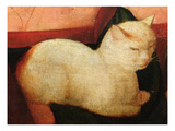 A White Cat, Detail from 'Four People Laughing at the Sight of a Cat' Giclee Print by Niccolo Frangipane