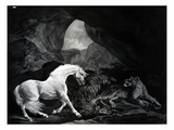 A Horse Startled by a Lioness, Engraved by Benjamin Green, 1774 (Engraving) Giclee Print by George Stubbs