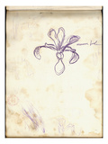 Iris (Purple Pencil on Paper) Giclee Print by Claude Monet
