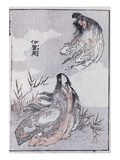 A Witch and a Woman, from a Manga (Colour Woodblock Print) Giclée-Druck von Katsushika Hokusai