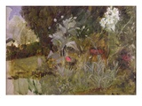 Study of Flowers and Foliage, for 'The Enchanted Garden' Giclee Print by John William Waterhouse