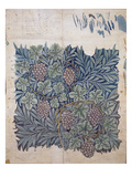 Leaf and Grape Design for 'Vine' Wallpaper (Pencil and W/C on Paper) Giclee Print by William Morris