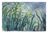 Yellow and Purple Irises, 1924-25 (See Detail 414407) (Oil on Canvas) Giclee Print by Claude Monet