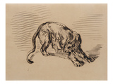 Tiger Frightened by a Snake, 1858 (Pen and Ink on Tracing Paper) Giclee Print by Eugene Delacroix