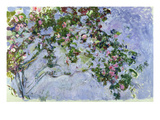 The Roses, 1925-26 Giclee Print by Claude Monet