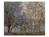 The Loing Canal in Spring, 1892 Giclee Print by Alfred Sisley