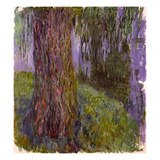 Weeping Willow and the Waterlily Pond, 1916-19 Giclee Print by Claude Monet