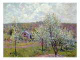 Spring in the Environs of Paris, Apple Blossom, 1879 Giclee Print by Alfred Sisley