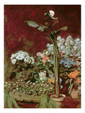 Arum and Hothouse Plants, 1867 Giclee Print by Pierre-Auguste Renoir