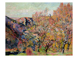The Valley of the Sedelle in Crozant, c.1898 Giclee Print by Armand Guillaumin