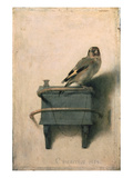 Le Chardonneret, 1654 Reproduction giclée Premium par Carel Fabritius