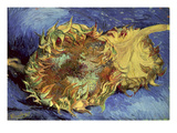 Sunflowers, 1887 Giclee Print by Vincent van Gogh