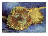 Sunflowers, 1887 Premium Giclee Print by Vincent van Gogh