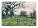 A Fenland Lane with Pollarded Willows, 1887 (W/C on Paper) Giclee Print by William Fraser Garden