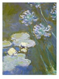 Waterlilies and Agapanthus, 1914-17 (Detail) Giclee Print by Claude Monet