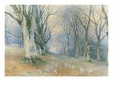 Fairies and Squirrels, C.1870 (W/C on Paper) Lámina giclée por Richard Doyle