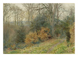 Path Through the Wood, 1902 (W/C on Paper) Giclee Print by Wilmot, R.W.S. Pilsbury