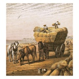 Bringing in the Harvest Giclee Print by  English