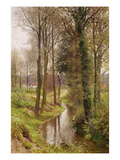 Round My House: the Mill Stream, Ockham, 1880-86 (W/C and Gouache) Giclee Print by Henry Sutton Palmer