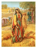 Ruth in the Corn-Field Premium Giclee Print by  English