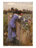 The Flower Picker (Oil on Canvas) Reproduction procédé giclée par John William Waterhouse