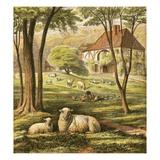 Farmhouse Gicléedruk van  English