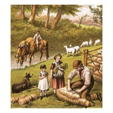 Sheep Shearing Giclee Print by  English